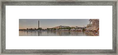 Cherry Blossoms - Panorama - Washington Dc - 01131 Framed Print by DC Photographer