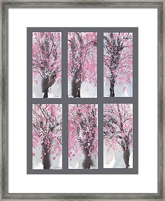 Cherry Blossoms Framed Print by Sumiyo Toribe