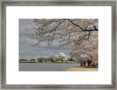 Cherry Blossoms With Jefferson Memorial - Washington Dc - 011317 Framed Print by DC Photographer