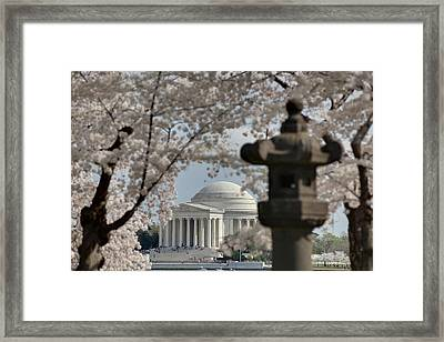 Cherry Blossoms With Jefferson Memorial - Washington Dc - 011327 Framed Print by DC Photographer