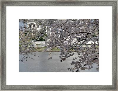 Cherry Blossoms With Jefferson Memorial - Washington Dc - 011337 Framed Print by DC Photographer