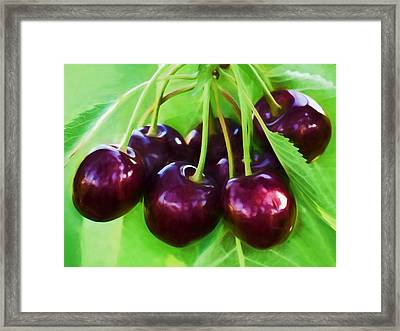 Cherry Ripe Delight Framed Print by Georgiana Romanovna
