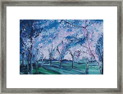 Cherry Trees Impressionism Framed Print by Eric  Schiabor