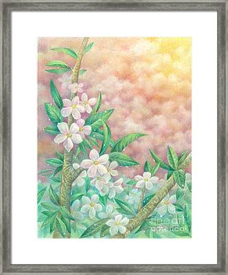 Cherryblossoms Framed Print by Charity Goodwin