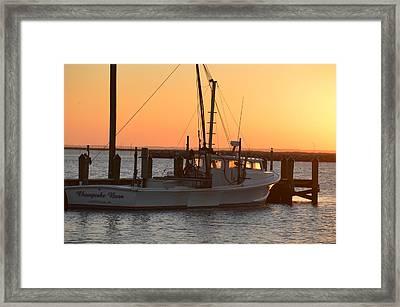 Chesapeake Born Framed Print by Quita Jean