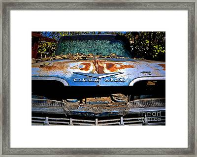 Chevrolet Picking Framed Print by Gwyn Newcombe