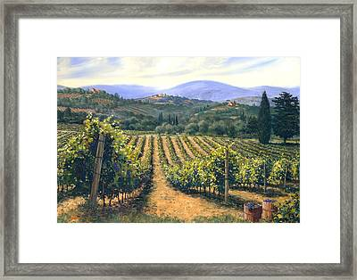 Chianti Vines Framed Print by Michael Swanson