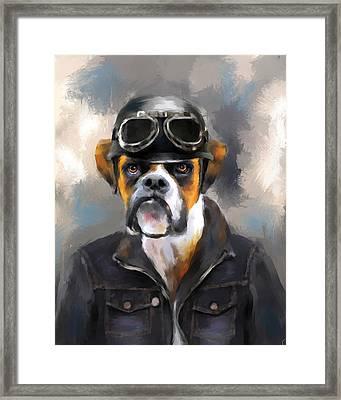 Chic Boxer Aviator Framed Print by Jai Johnson