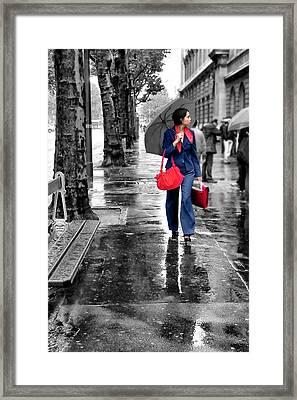 Chic Framed Print by Nikolyn McDonald
