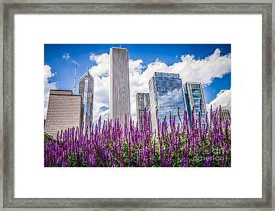 Chicago Downtown Buildings And Spring Flowers Framed Print by Paul Velgos
