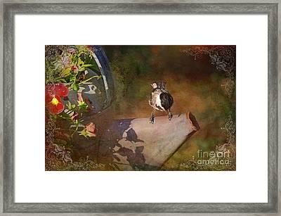 Chickadee Flower Pot Framed Print by Debbie Portwood