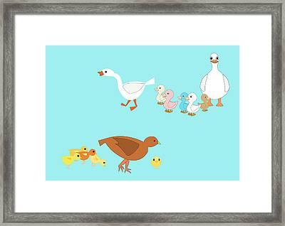 Chicks And Ducks Framed Print by John Orsbun