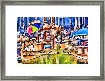 Chico Sail Boat By Diana Sainz Framed Print by Diana Sainz