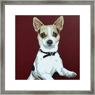 Chihuahua 2 Framed Print by Slade Roberts
