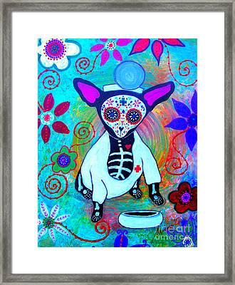 Chihuahua Doctor Framed Print by Pristine Cartera Turkus
