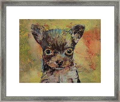 Chihuahua Framed Print by Michael Creese