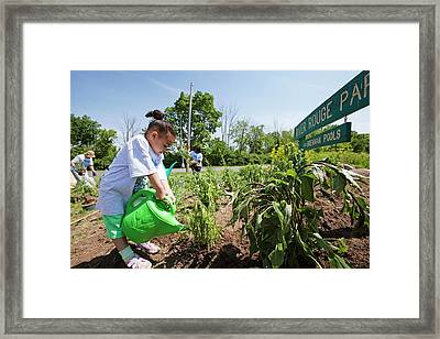 Child Watering Plants Framed Print by Jim West