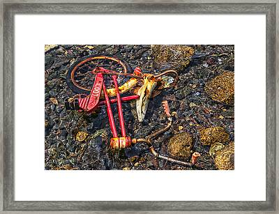 Childhood Bike Framed Print by Garry Gay