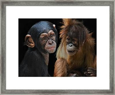 Children Of The Evolution Framed Print by Joachim G Pinkawa