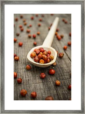Chile Chiltepin Framed Print by Aged Pixel