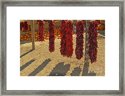 Chile Ristras Framed Print by Richard and Ellen Thane