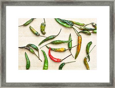 Chili Peppers Framed Print by Tom Gowanlock