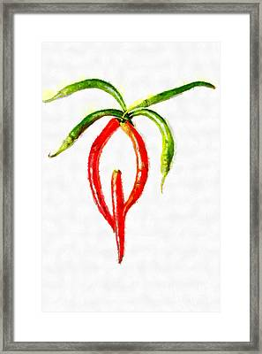 Chilli Palm Painting Framed Print by Magomed Magomedagaev