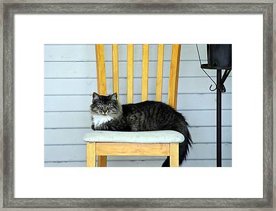 Chillin Framed Print by Camille Lopez