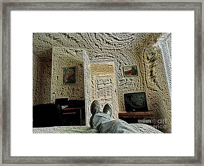 Chillin' Framed Print by   FLJohnson Photography