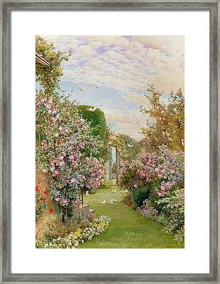 China Roses Framed Print by Alfred Parsons
