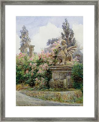 China Roses Villa Imperiali Genoa Framed Print by George Samuel Elgood