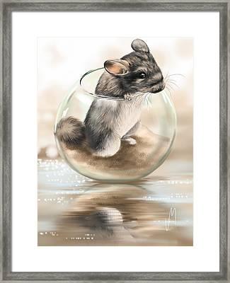 Chinchilla Framed Print by Veronica Minozzi