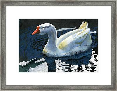 Chinese Waterfowl Framed Print by Sharon Freeman