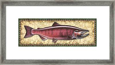 Chinook Spawning Panel Framed Print by JQ Licensing