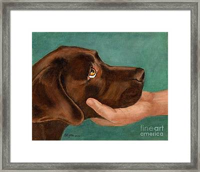Chocolate Lab Head In Hand Framed Print by Amy Reges