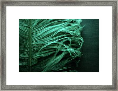 Chorus Lines Framed Print by Rebecca Sherman