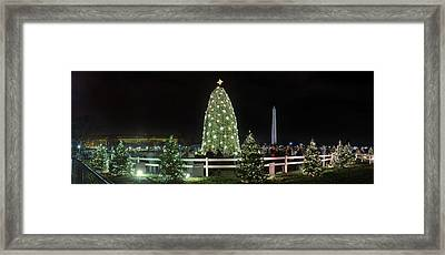 Christmas At The Ellipse - Washington Dc - 011310 Framed Print by DC Photographer