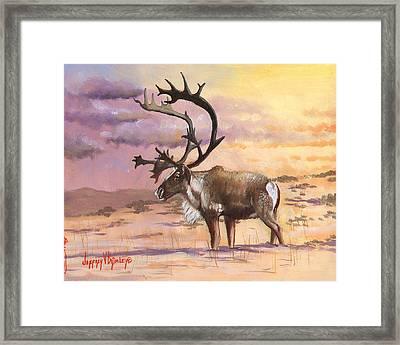 Christmas Caribou Framed Print by Jeff Brimley