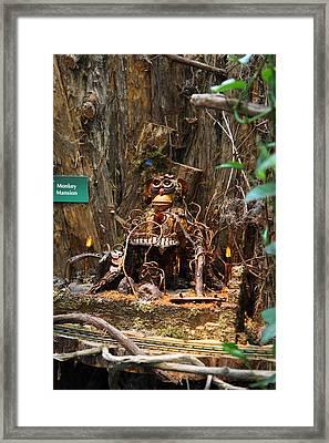 Christmas Display - Us Botanic Garden - 011315 Framed Print by DC Photographer