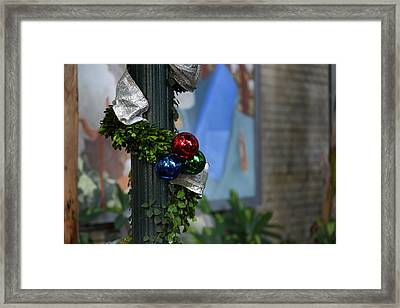Christmas Display - Us Botanic Garden - 01132 Framed Print by DC Photographer