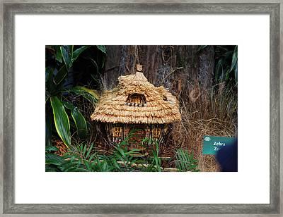 Christmas Display - Us Botanic Garden - 011333 Framed Print by DC Photographer