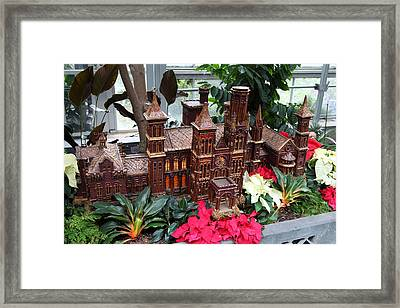 Christmas Display - Us Botanic Garden - 011352 Framed Print by DC Photographer