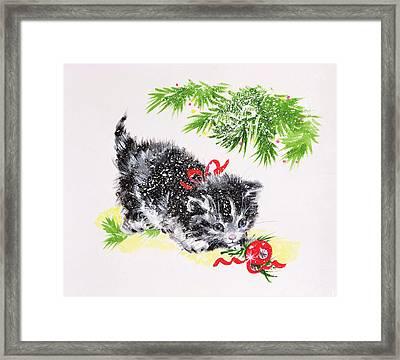 Christmas Kitten Framed Print by Diane Matthes