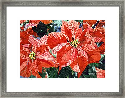 Christmas Poinsettia Magic Framed Print by David Lloyd Glover