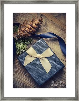 Christmas Present Framed Print by Jelena Jovanovic