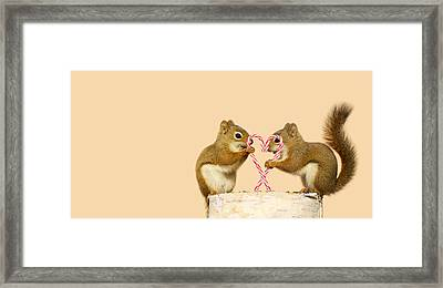 Christmas Squirrels. Framed Print by Kelly Nelson