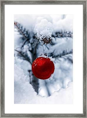 Christmas Tree Framed Print by Joana Kruse