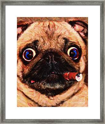 Cigar Puffing Pug - Painterly Framed Print by Wingsdomain Art and Photography