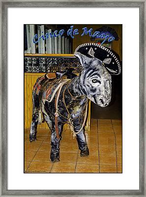 Cinco De Mayo Framed Print by LeeAnn McLaneGoetz McLaneGoetzStudioLLCcom