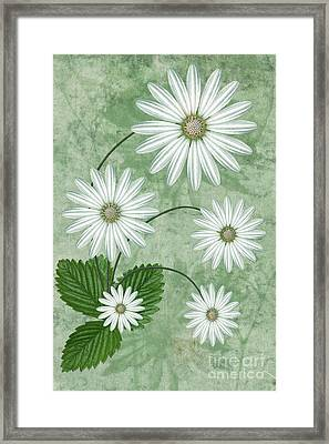 Cinco Framed Print by John Edwards
